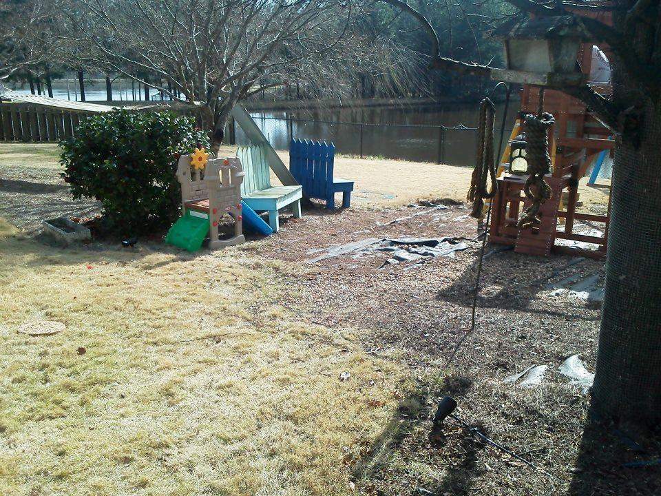 Nature S Lawn All In One Reviews
